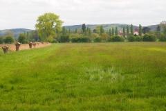 Bild Blick vom Andachtsplatz